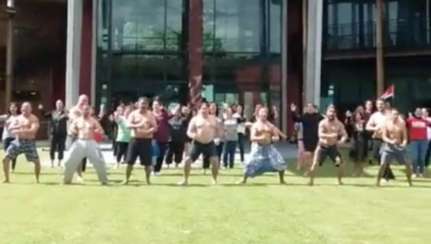 maorihakas